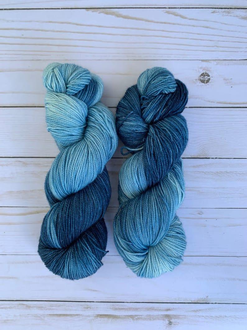 Hand Dyed Sock Yarn Cereus Sock Favorite Pair