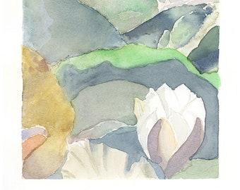 Waterlily greens