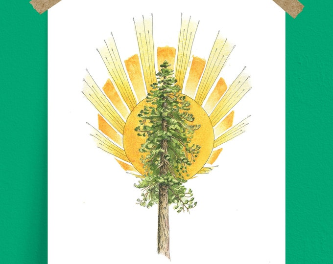 Ponderosa Pine Tree and Sunburst Art Print, inspired by Paradise, California