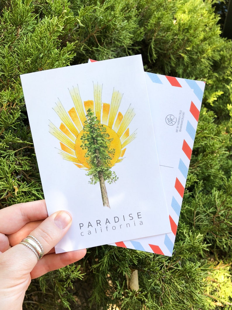 Postcard Set: Ponderosa Pine Tree and Sunburst inspired by image 0