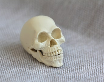 Mini Resin Human Skull Sculptures   Original Artworks   Handmade Sculpture   Resin Art   Skull Gifts   Collectibles