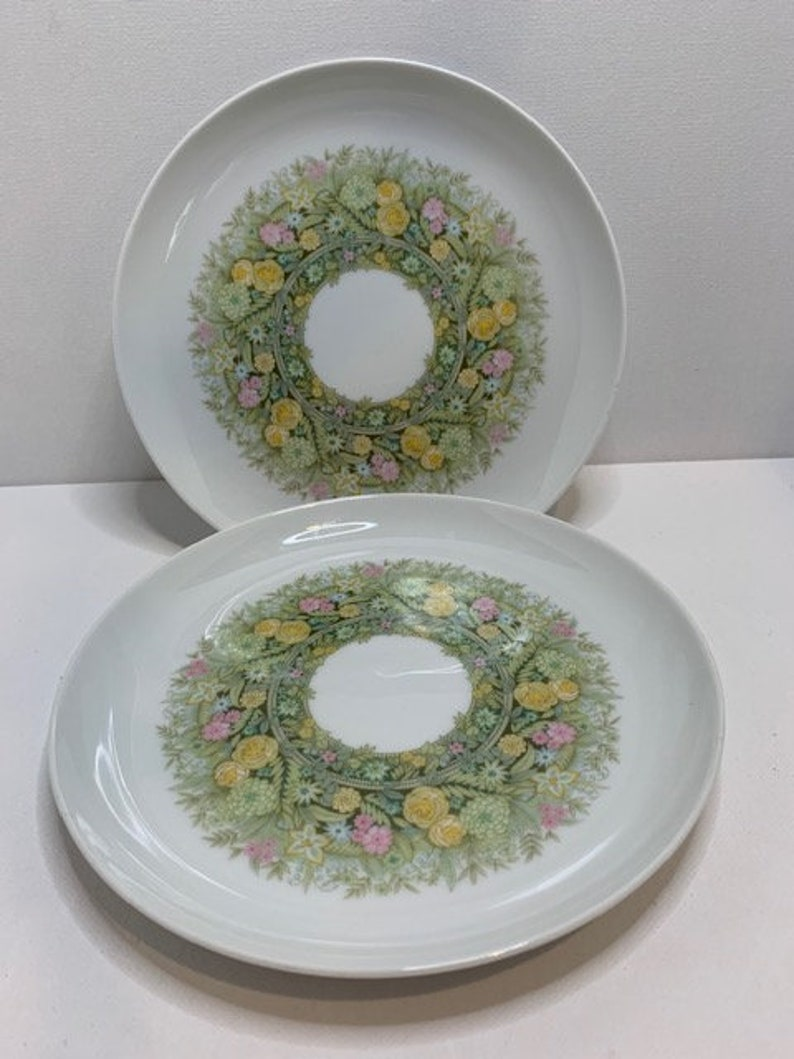 Vintage Set of 2 Noritake Bimini Floral Green Salad PlateYounger Image #6923