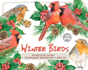 Watercolor winter birds clipart-Christmas clip art-Red cardinals, Robin birds, Holly leaves and berries, pine cone-Holiday-Instant download