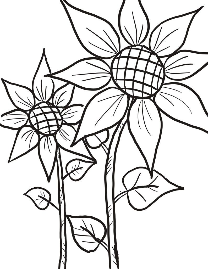 Double sunflower coloring page | Etsy