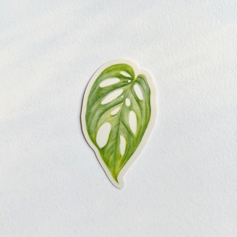 leafy 4 pack matte vinyl weatherproof sticker