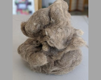 Cat Fiber for Spinning, Clean, Roving, Domestic Shorthair and Longhair, Yarn, Fur Crafting, Needle Felting, Exotic, Knitting, Crochet