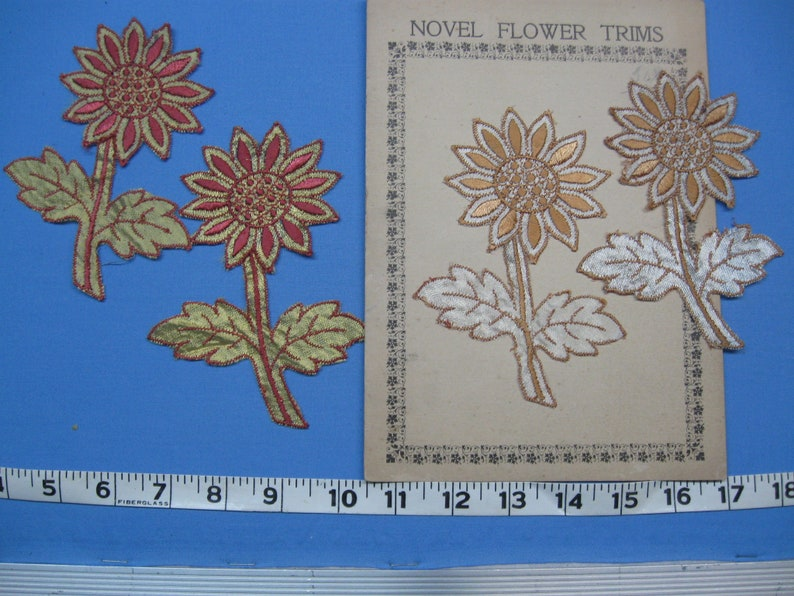 Applique Flowers 10 Sewing Embellishments Rayon BT-20
