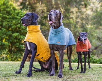 Designer dog Sweater (the MARCOOLA) For Great Danes & Greyhounds