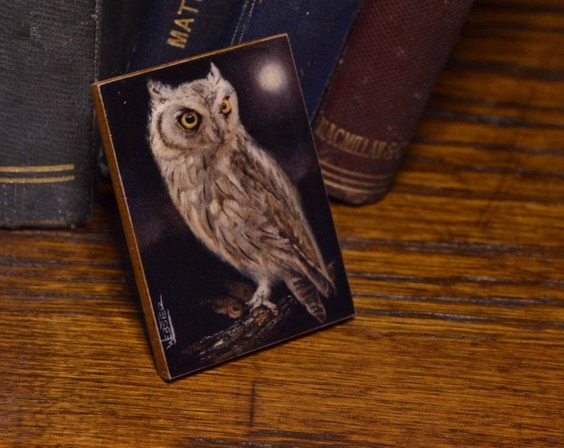 Owl-Fridge Magnet-Unique Gift-Home Decor-Giclee image 0