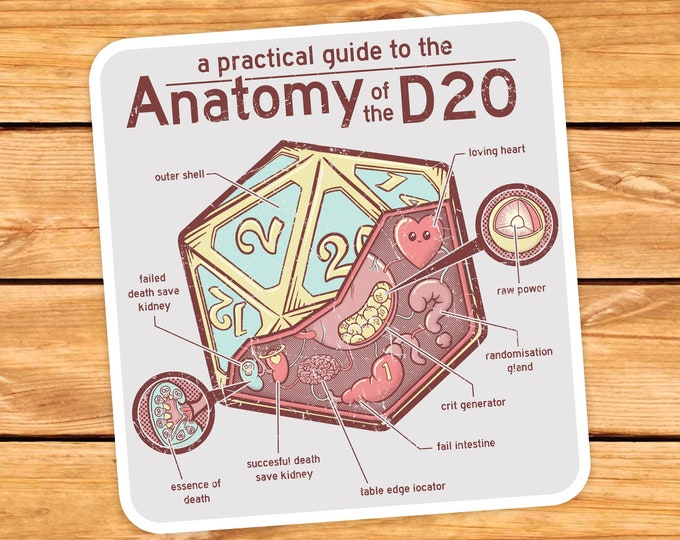 Anatomy of the D20 Sticker | Dnd gift | GM | Dungeons & Dragons | Dice | Natural 20