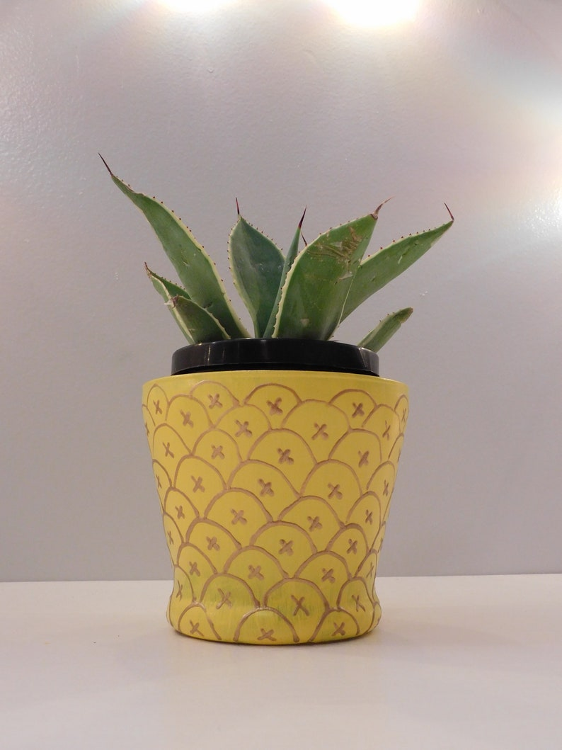 Pineapple Vase with Plant
