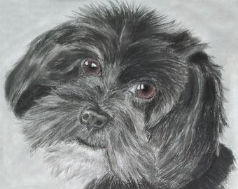Animal Lovers Printable Portrait Pet Art Shitzu German Wildhair Pointer Art Print by Jamie Lynn Dog Lovers