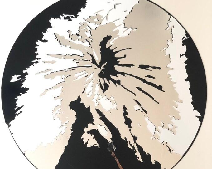 Rectum  Art *Mirror Diogenes*
