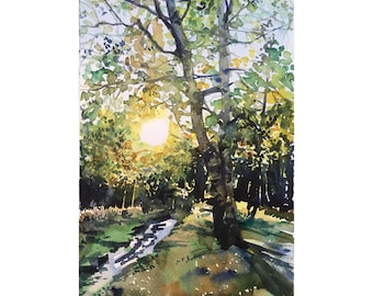Watercolor Birch and the sun, Original watercolor painting Autumn forest, Watercolor autumn tree, Indian summer