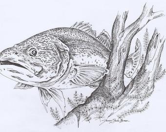 Fish Pen Drawing Etsy