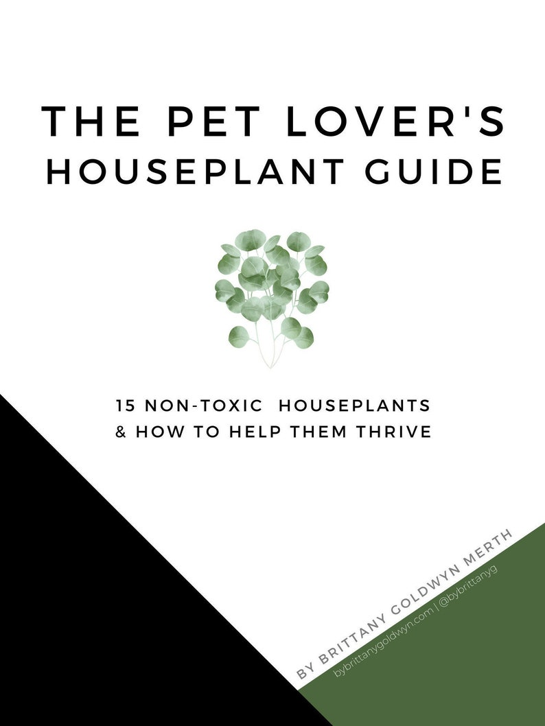 The Pet Owners Houseplant Guide image 0