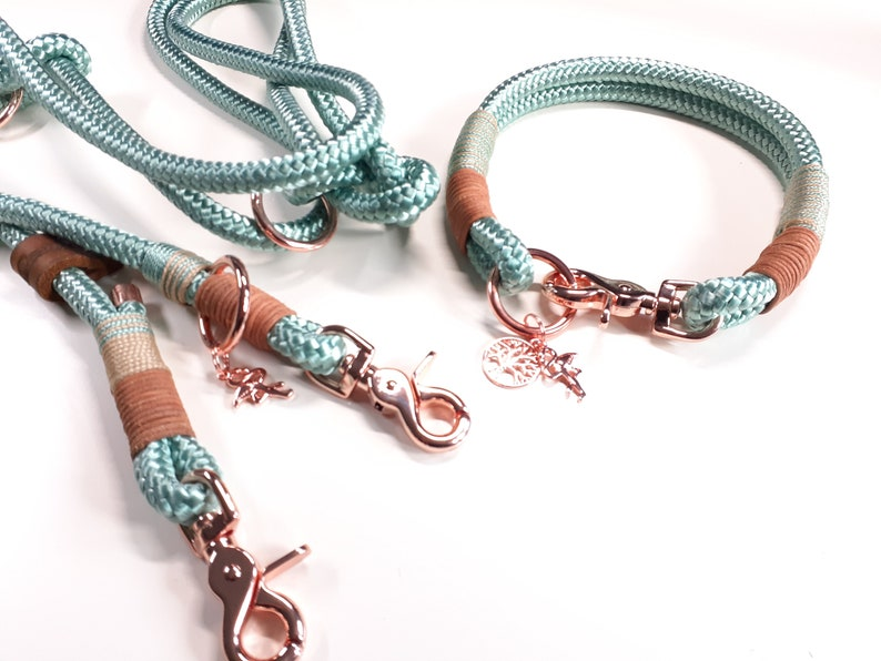 Tau Set dog collar dog leash collar set SWEETHEART from PPM in mint green with leather stake