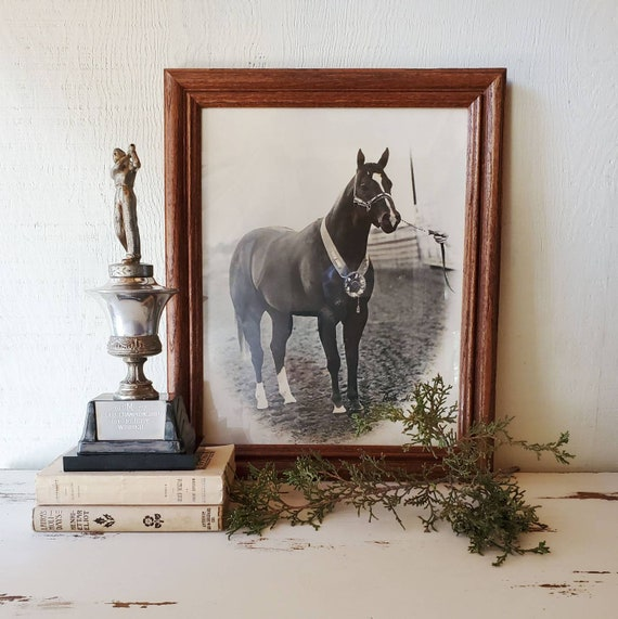 Vintage First Place Equestrian Photograph. Black & White Horse Photo. 1st Place Ribbon. Wall Art for the Horse Lover!
