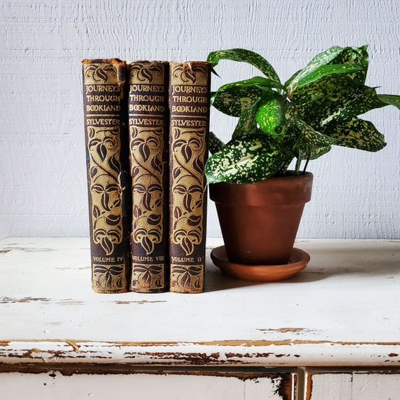 Set of 3 antique leather bound books. Bookshelf decor. Journeys Through Bookland, Sylvester.