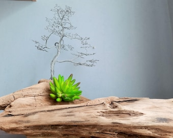 Snake Crab Turtle Driftwood Unique Wood Natural Trunk Tree for Aquarium Home Garden Decor Craft Ornament B5