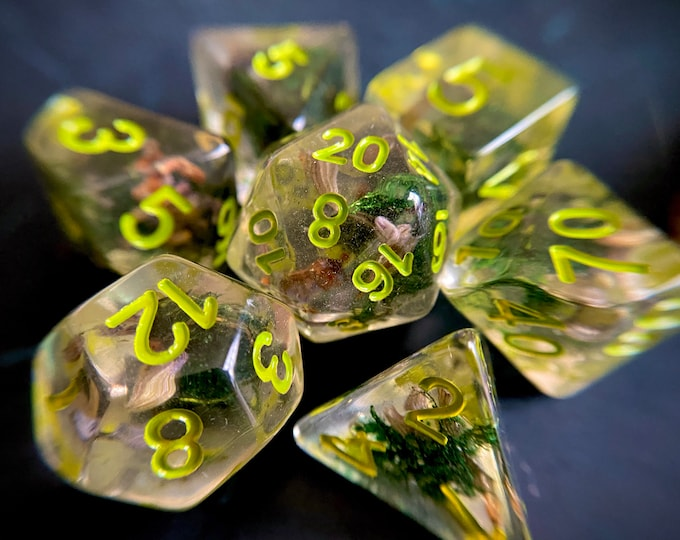 Seedling DNd Dice set for Dungeons and Dragons TTrpg, d20 Polyhedral dice set - real preserved MOSS & Seeds inside!