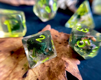 Seedling DNd Dice set for TTRPG, d20 Polyhedral dice set - moss druid flower dice, real preserved MOSS & Seeds inside!