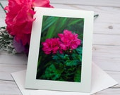 Red Flowers Blooming / Photo, Photography Greeting Card / A2 / Handmade Greeting Card