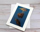 Blue Heron Photo card / Photo, Photography Greeting Card / A2 / Handmade Greeting Card