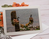 Family of Canadian Geese / Photo, Photography Greeting Card / A2 / Handmade Greeting Card