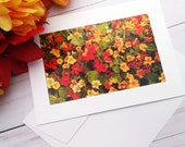 Autumn Flowers, Florence Oregon / Photo, Photography Greeting Card / A2 / Handmade Greeting Card