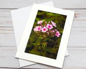 Pink Flowers Blooming / Photo, Photography Greeting Card / A2 / Handmade Greeting Card