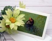 Sea Lion Sunning / Photo, Photography Greeting Card / A2 / Handmade Greeting Card