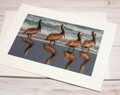 Pelicans on the Beach / Photo, Photography Greeting Card / A2 / Handmade Greeting Card