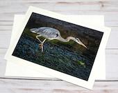Heron Stalking / Photo, Photography Greeting Card / A2 / Handmade Greeting Card