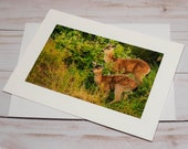 Innocence in the Wild / Photo, Photography Greeting Card / A2 / Handmade Greeting Card