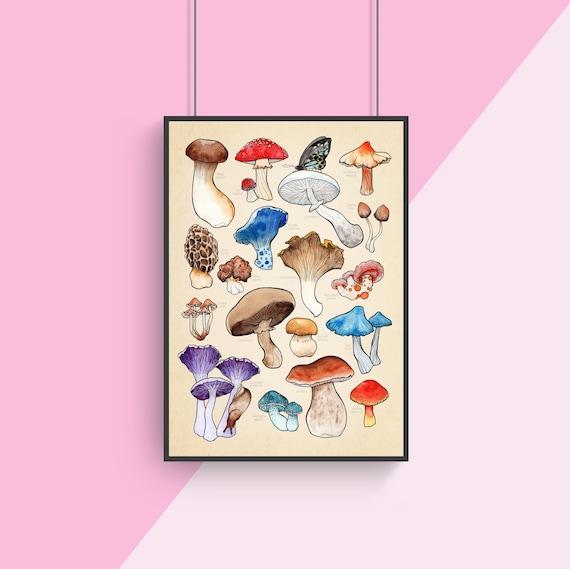 Mushroom Art - Fungi Poster - Kitchen Print - Home Kitchen Decor - Food Poster - Botanical Art - Science Print