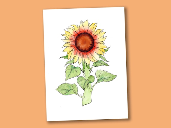 Sunflower Art Print A4 - Sunflowers Illustration - Botanical Boho Art - Flower Art - Summer Home Decor - Gifts for Plant Lovers Gardeners