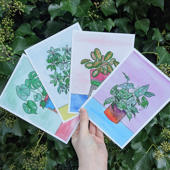 Set of 4 Houseplant Prints - Swiss Cheese Plant - Monstera Adansonii Art - Tropical Illustration - Colorful Decor - Leaf Wall Art