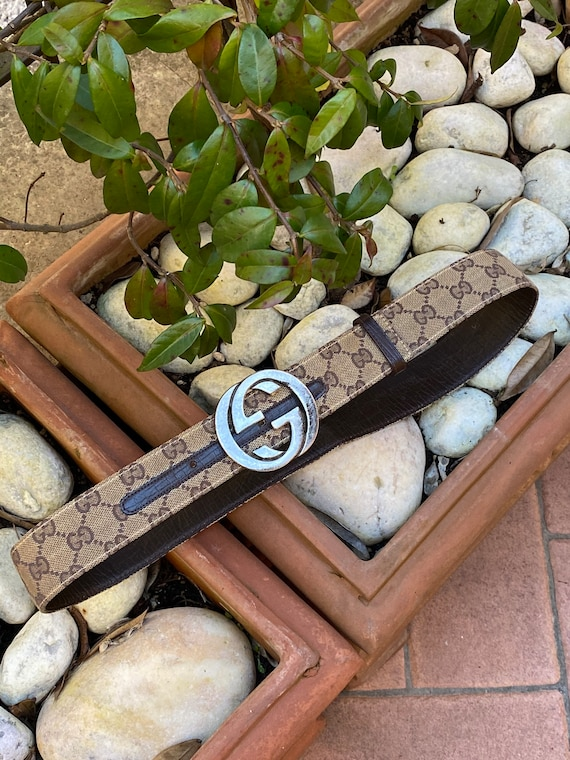 Gucci 90s/Brown leather canvas belt Gucci/Vintage