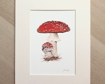 Amanita muscaria Mushroom Watercolor - Red Mushroom Fly Agaric Botanical Cottage Core Art Print