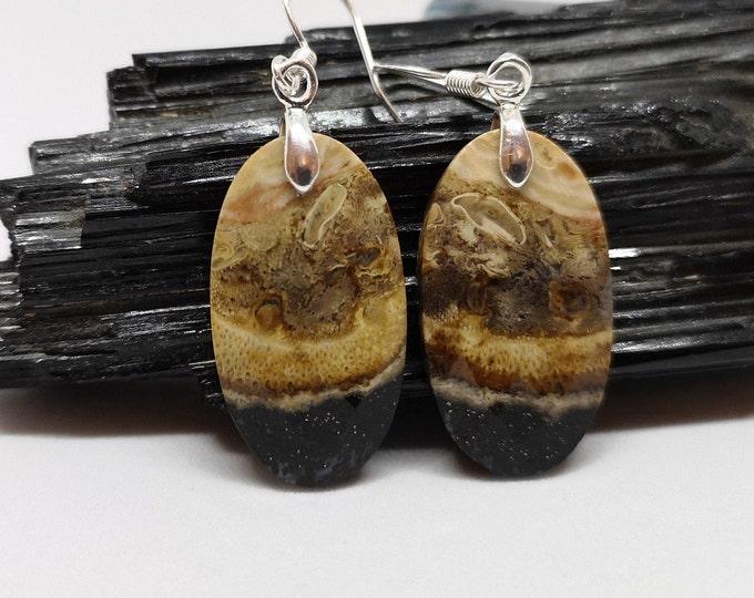 Image de l'article à la une: Boucles d'oreilles en bois fossile facetté, lithothérapie, Fait main