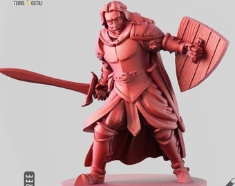 Human Paladin miniature fighter Dungeons and dragons, DnD , Age of Sigmar, W40k, 9th Age, kow, mordheim | RPG tabletop miniature
