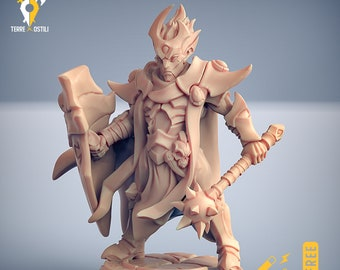 Dark elf paladin warrior eldar drow miniature Dungeons and dragons, pathfinder, DnD , frostgrave, mordheim | RPG tabletop miniature