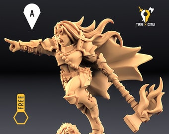 Fighter Heroine Valkyrie miniature Dungeons and dragons, DnD , Age of Sigmar, W40k, 9th Age, kow, mordheim | RPG tabletop miniature