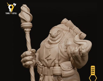 Tortle sorcerer magician miniature Dungeons and dragons, pathfinder, DnD , Age of Sigmar, frostgrave, mordheim | RPG tabletop miniature