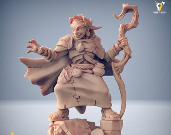 Sage wizard druid old lady Scourgeland  miniature Dungeons and dragons, pathfinder, DnD , Age of Sigmar, mordheim | RPG tabletop miniature