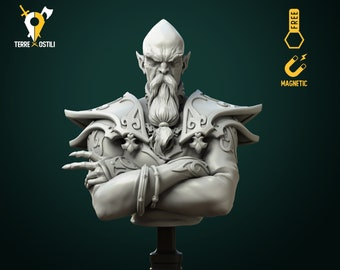 High mage elf wizard sorcerer bust resin high quality miniature Dungeons and dragons, Fantasy bust   RPG tabletop