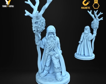 Druid ice shaman old miniature Dungeons and dragons, DnD , Age of Sigmar, W40k, 9th Age, kow, mordheim | RPG tabletop miniature
