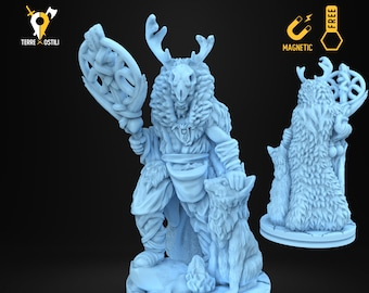 Druid ice frost winter shaman miniature Dungeons and dragons, DnD , Age of Sigmar, W40k, 9th Age, kow, mordheim | RPG tabletop miniature