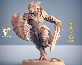 Dragonborn paladin fighter miniature Dungeons and dragons, pathfinder, DnD , Age of Sigmar, frostgrave, mordheim | RPG tabletop miniature